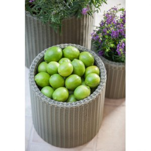 Jardin injection molded Thick Wicker